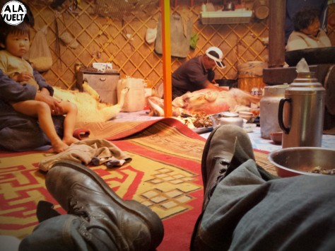Adelante, Germán descansando. Atrás, dos ovejas recién cuereadas, en plena habitación. Otra forma de vida, sin dudas.